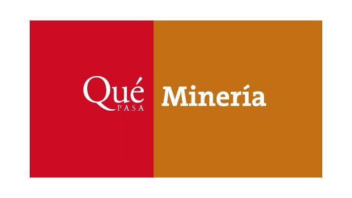 Revista Qué Pasa-Menería