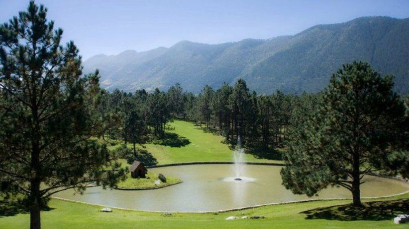 Midyear Meeting at Saltillo and Monterreal Forests